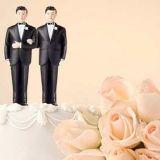 Tasa-arvoinen avioliittolaki saamassa oman kansalaisaloitteensa