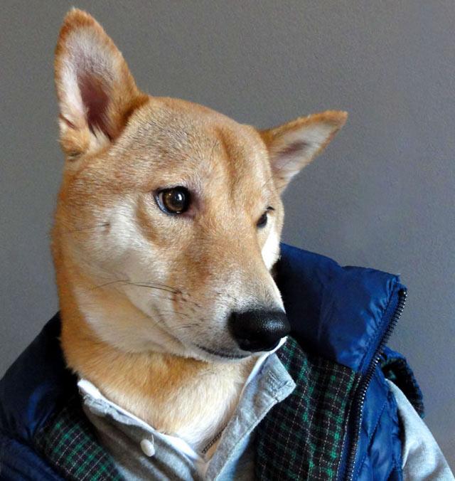 Kerrokset pitävät lämpimänä, neuvoo Menswear Dog.