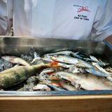 Ravintola Nokka jatkaa kampanjointia Itämeren puolesta
