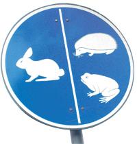 Kaivokselassa eläimetkin ohjataan oikeille kulkuradoille.