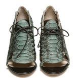 Skovgaardilta kenkää.