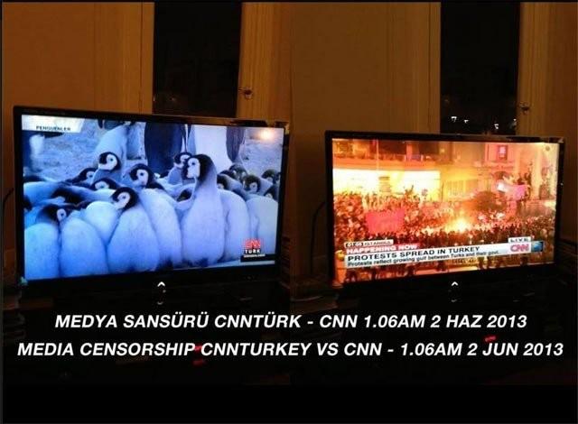 Turkin CNN kertoi pingviineistä.