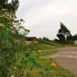 Retki idyllisempään Helsinkiin: Puutaloja ja näköalapaikkoja