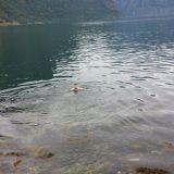 Norjassa Atlantissa uimassa. Ei se niin kylmää ollut. Ehkä jotain 10 asteista.