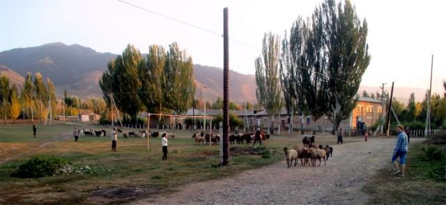 Löytyi kylästä jopa futiskenttäkin, jota tosin käytettiin johonkin aivan muuhun.