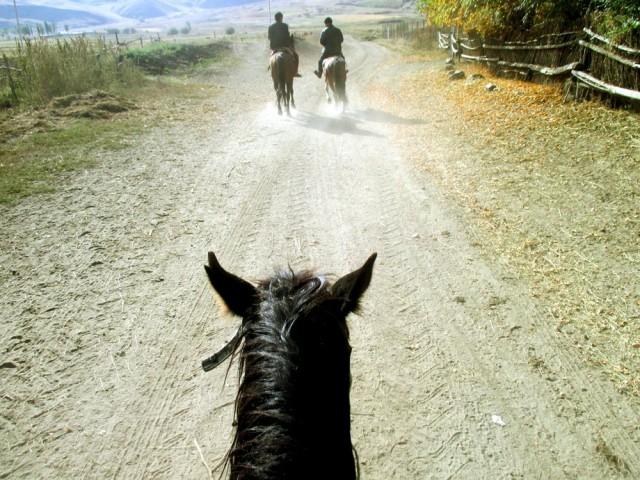 Allekirjoittanut ensimmäistä kertaa hevosen selässä.
