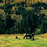 Tour de Keski-Aasia, päivät 3-4