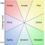 Mihaly Csikszentmihalyi on tutkinut Flow -ilmiötä. Se on se hetki työssä kun aika lentää. Se hetki kun työ inspiroi etkä tajua tekeväsi työtä. Olet innostunut ja energinen.