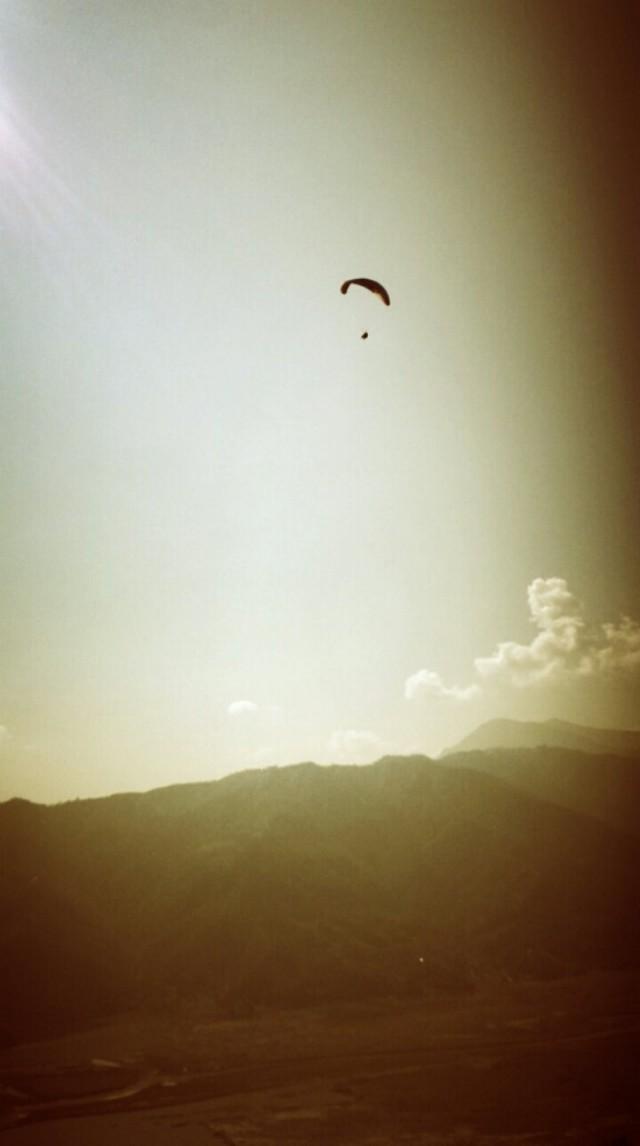 Tim lensi korkeuksiin kuin lintu.