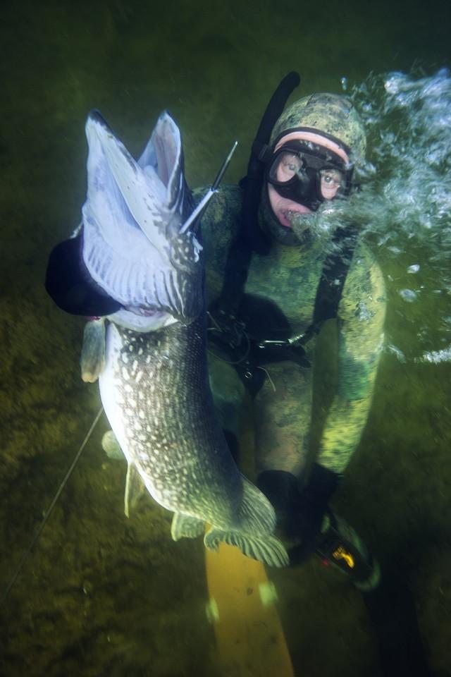 Näin herrasmies pyytää kalan (Kuva: Team Kampela)