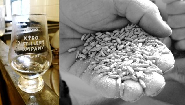 Kyrö Distilleryn ruisviski on 100% ruista - maailman mittakaavassa moinen on melko harvinaista.