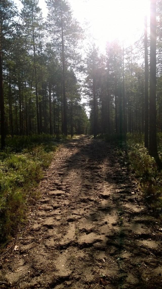 Joskus tie saattaa vaikuttaa karulta, mutta tärkeintä on se että se kantaa askeltaessani sillä..