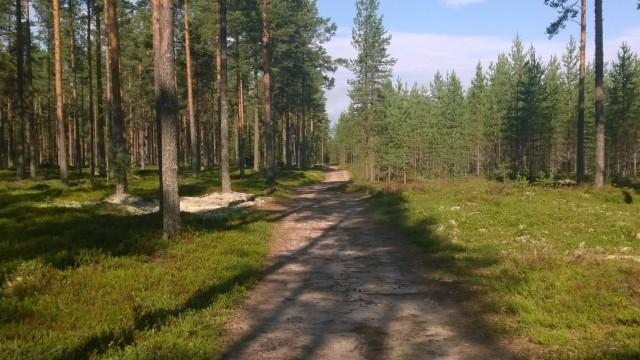 Raittius on polku, joka vie minua kohti parempaa huomista.