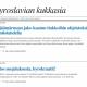 Uusi blogi kokoaa yhteen byrokratian helmet