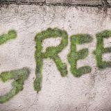Sammalgraffiti tuo vihreyttä betoniin