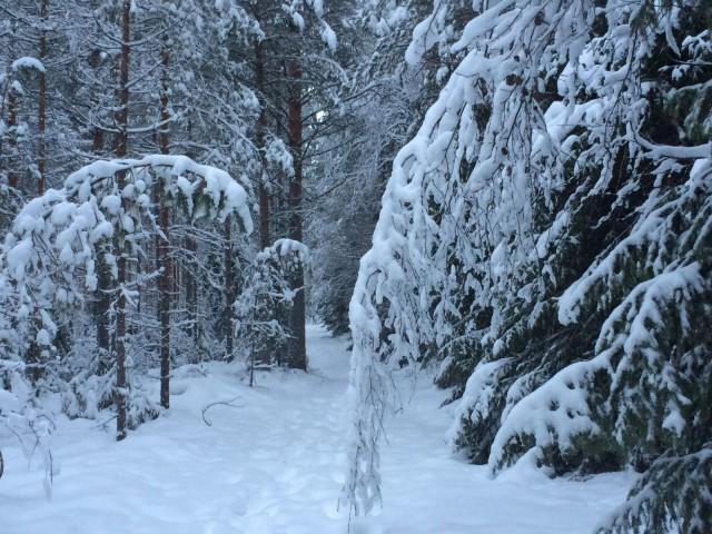 Rauha sisälläni on kaunis kuin luminen maisema.