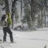 Kaverukset kävelevät lumenpyryssä Kanadasta Meksikoon