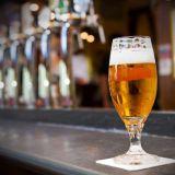 Sadan olutlaadun Bier-Bier avaa Diana-puiston kupeessa
