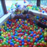 Opiskelija teki asuntolahuoneestaan pallomeren