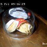 Tässä on Islannin viimeinen McDonald's-hampurilainen