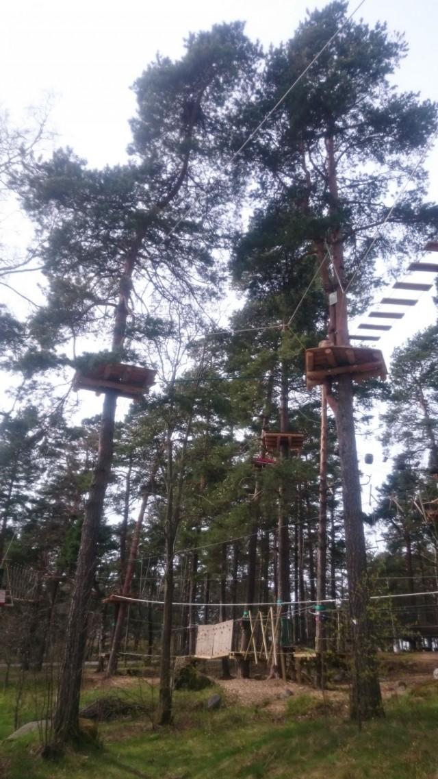 Korkee seikkailupuistossa riittää kiipeämistä.