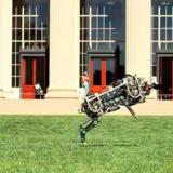 Robottigepardi osaa juoksuhypyn