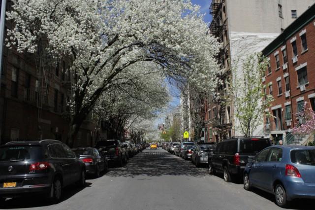 New York on kauneimmillaan kenties keväällä.