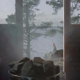 Tässä tulee some-sauna