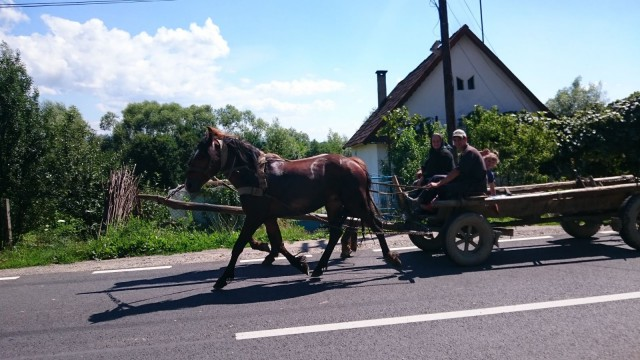 Romaniassam näki silloin tällöin ihmisiä kulkemassa hevosilla pitkin autoteitä. Moottoripyörällä ajaessa piti varoa ettei mutkassa ollut hevosen tai lehmän jättämää liukumiinaa.