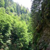 Tämä tie kulki kanjonissa, joen vartta pitkin. Metsän puut varjostivat kivasti. Ei ollut liian kuuma. Tien kunto oli paikoin kyllä aika hirveä tai oikeastaan surkea, mutta välillä taas ihan täydellinen.