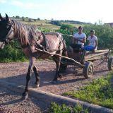 Romaniassa käytetään vielä paljon hevosia ja heinää leikataan usein käsin viikatteella.