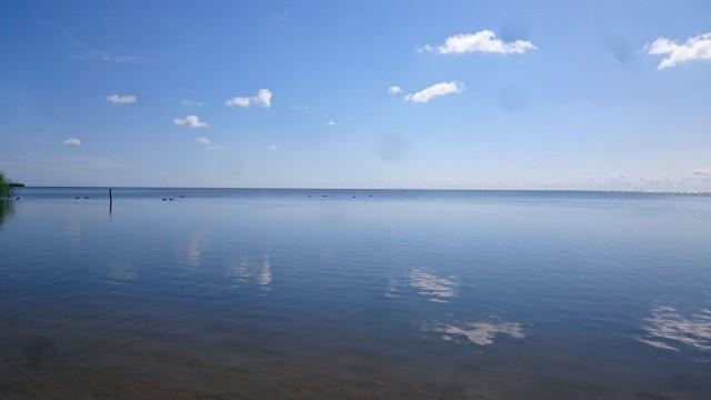 Curonian lagoon. Kaliningrad Venäjä.