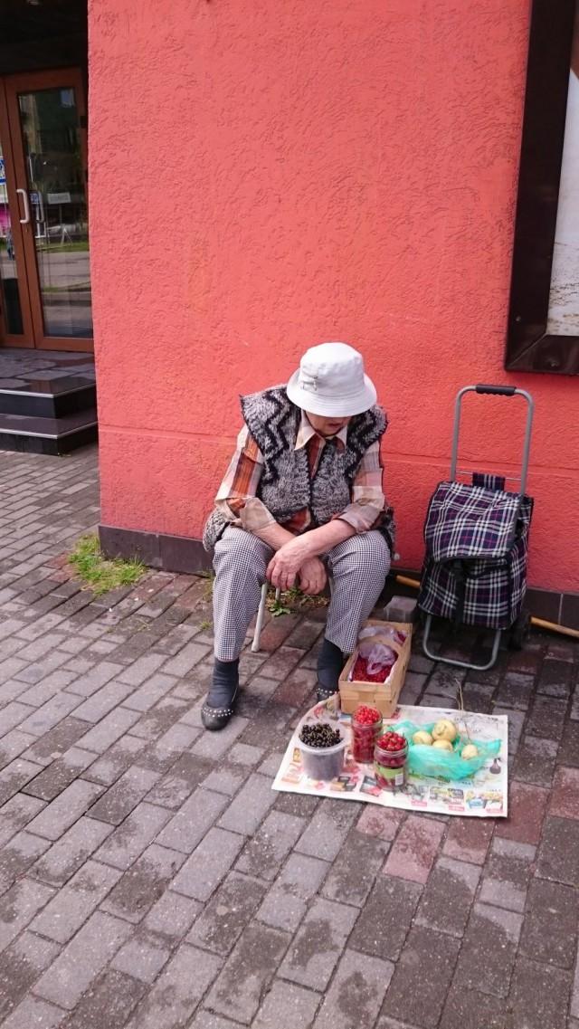 Marjanmyyjä. Kaliningrad, Venäjä.