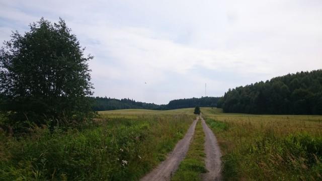 Helikopteri seurasi meitä sekä pellon yli loikkinutta metsäpeuraa. Me katosimme metsään luontopolulle ja sinne hävisi myös metsäpeura.