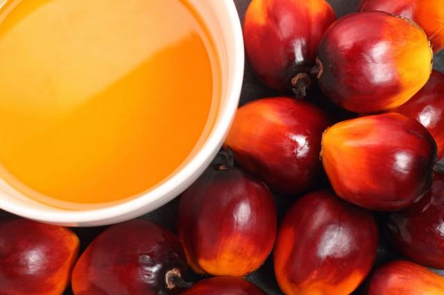 Palmuöljy puristetaan öljypalmun hedelmän sisällä olevasta siemenestä.