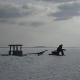 """""""Haaksirikko"""", 2013"""