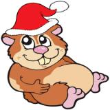 Jouluinen hamsteri (Kuva Googlesta.)