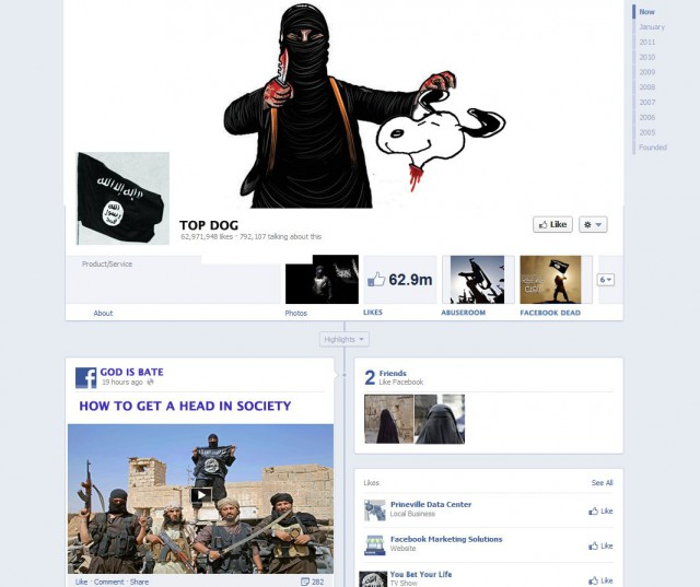 Disclaimer: This is not a real FB page but a mock-up created by the author RW