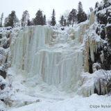 Suomen maagisimmat retkikohteet: jylhä jääputous, upea kanjoni ja salaperäinen tammi