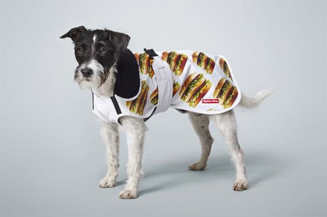 Big Macin voi pukea paitsi itsensä, myös lemmikkinsä ylle.