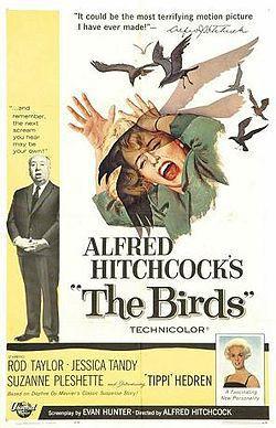 """""""Linnut"""", elokuva vuodelta 1963 (lähde: Wikipedia)"""