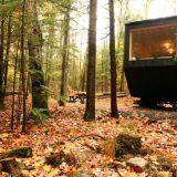 Minimökit keskellä metsää: maksimoitua rentoutta mahdollisimman pienessä tilassa