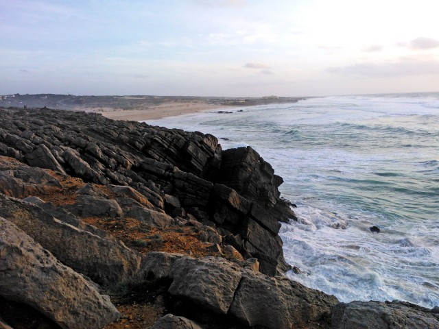 Atlantin suolaamalla rannalla ei kasva mitään