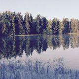 Elokuussa järvessä on elämää.