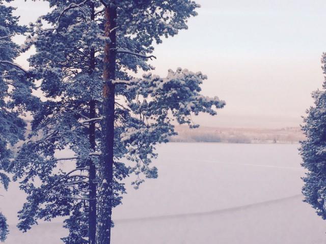 Tammikuussa on jo lunta ja pakkasta.