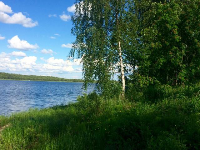 Suomen suvi kauneimmillaan.