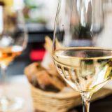 Koe uudenlainen makumaailma Viini ja Ruoka -messuilla