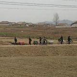Maaseudulla kuljetukset hoidetaan hiekkateitä pitkin kärryillä ja polkupyörillä.