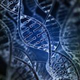 """Tutkijat löysivät genetiikan """"graalin maljan"""""""