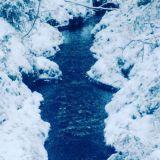 Toivon olevani kuin vesi purossa, joka vain soljuu eteenpäin.